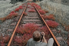 Stillgelegtes-Gleis