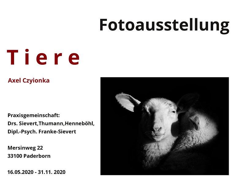 """Fotoausstellung """"Tiere"""""""