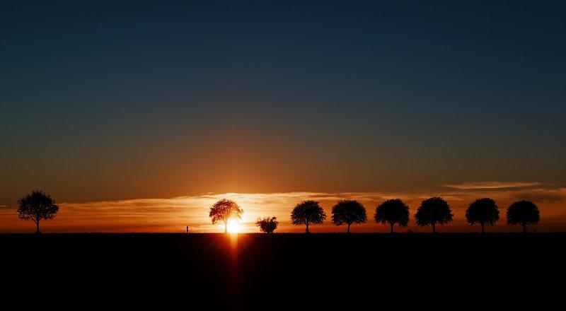 Walk Into The Sunlight